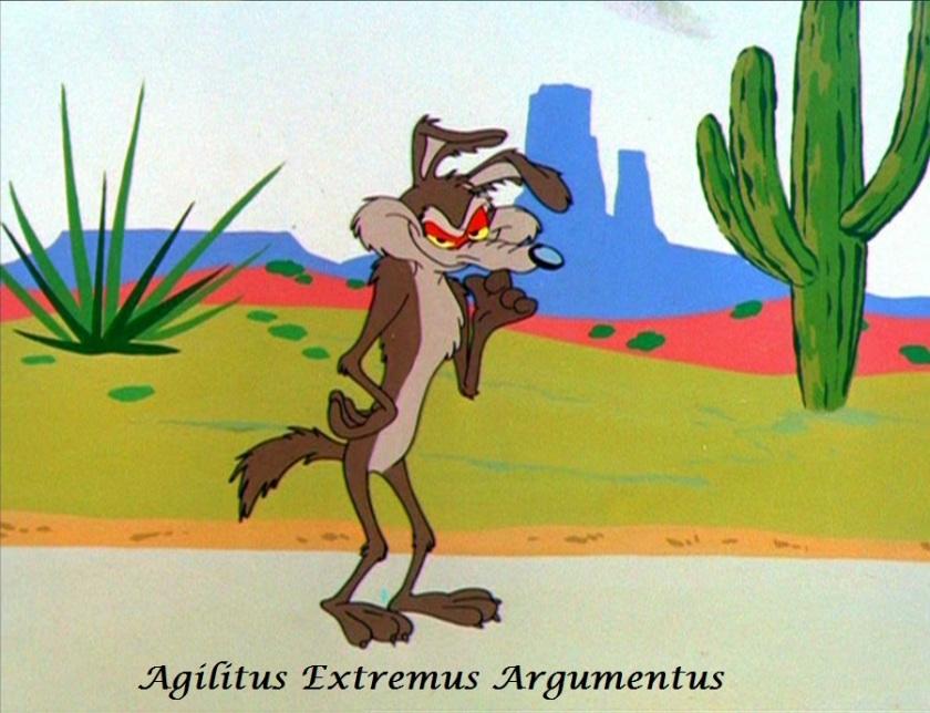 agilitus extremus arguementus